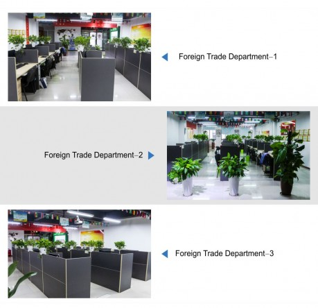 Foreign Trade Department 外贸部1